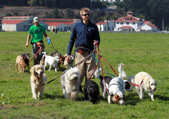 Jon and Ky, two professional dog walkers who work with Tails & Trails Dog Services in San Francisco