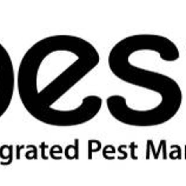 Pestec, San Francisco, CA - Localwise business profile picture