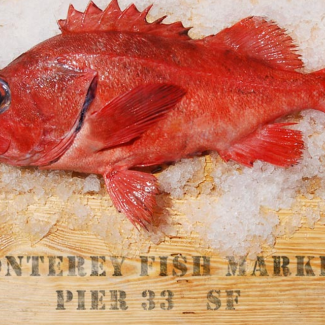 Monterey Fish Market, San Francisco, CA - Localwise business profile picture