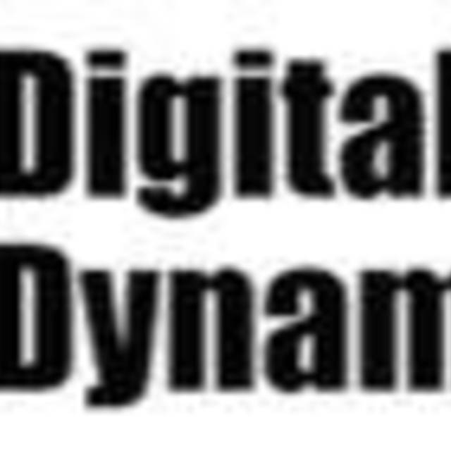 Digital Dynamics Inc., Scotts Valley, CA logo