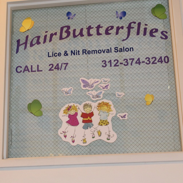 Hair Butterflies Lice & Nit Removal Salon, Chicago, IL - Localwise business profile picture