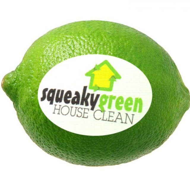 Squeaky Green House Clean, Oakland, CA - Localwise business profile picture