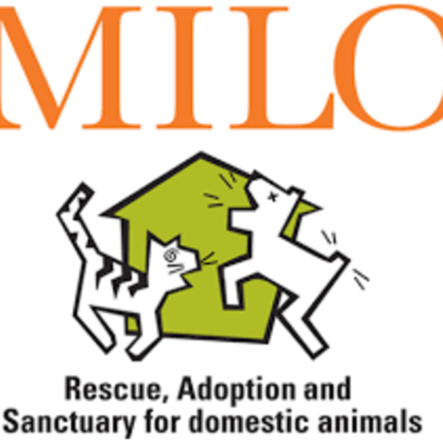 The Milo Foundation, Point Richmond, CA - Localwise business profile picture