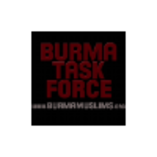 Burma Task Force USA, Chicago, IL - Localwise business profile picture
