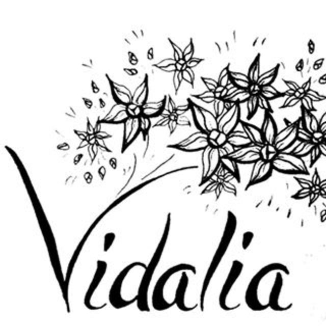 Vidalia Sandwiches & Pizza, Chicago, IL logo