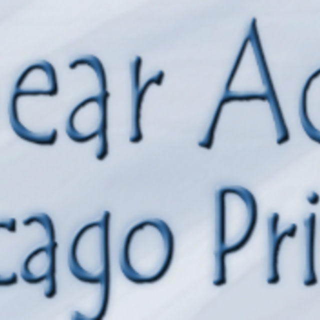 Black Bear Academy, Chicago, IL logo