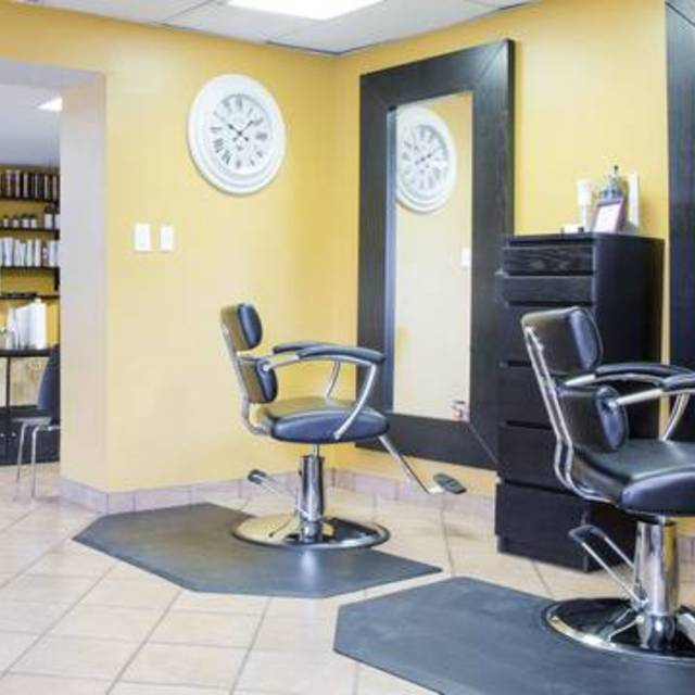 EGA Salon & Spa, Chicago, IL - Localwise business profile picture