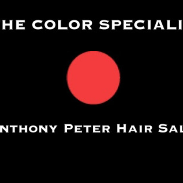 Anthony Peter Hair Salon, Oak Park, IL - Localwise business profile picture
