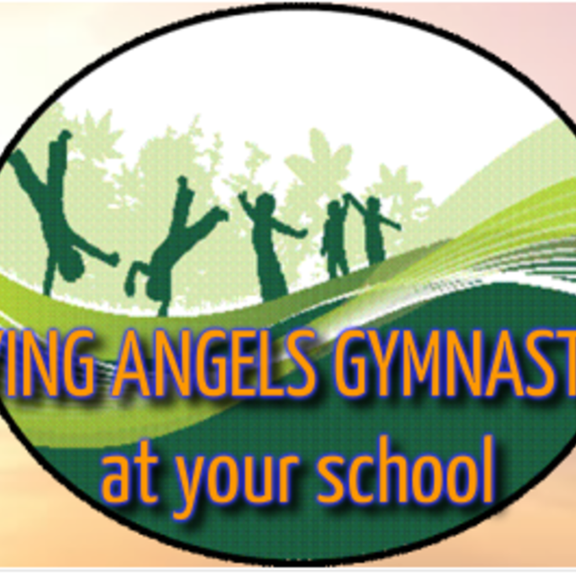 Flying Angels Gymnastics, Santa Rosa, CA - Localwise business profile picture