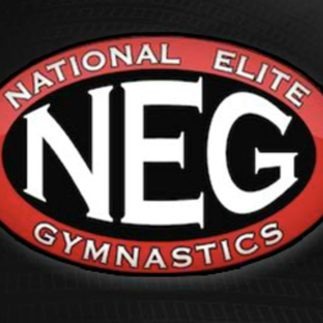 National Elite Gymnastics, Austin, TX - Localwise business profile picture