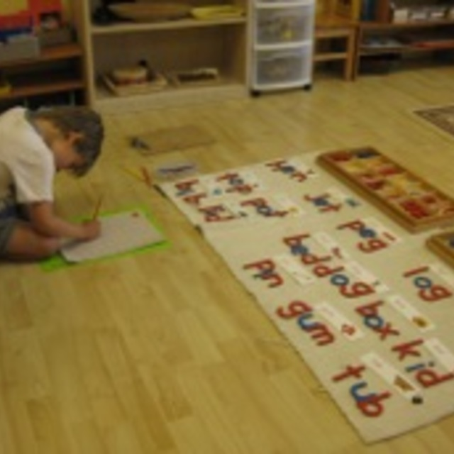 Lincoln Square Montessori School, Chicago, IL - Localwise business profile picture