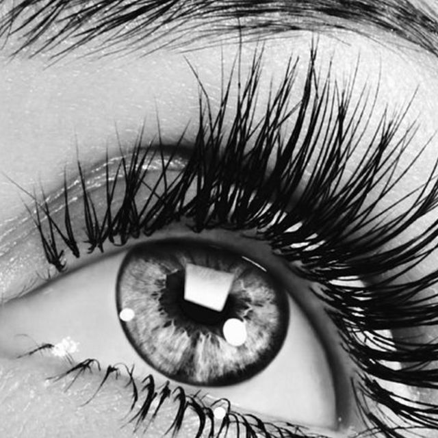 X Eye Spy Lash Salon, Alamo, CA - Localwise business profile picture