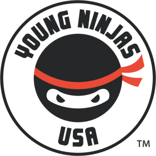 Young Ninjas, Los Angeles, CA logo