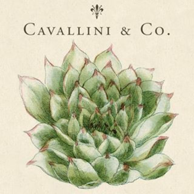 Cavallini Papers & Co, South San Francisco, CA logo