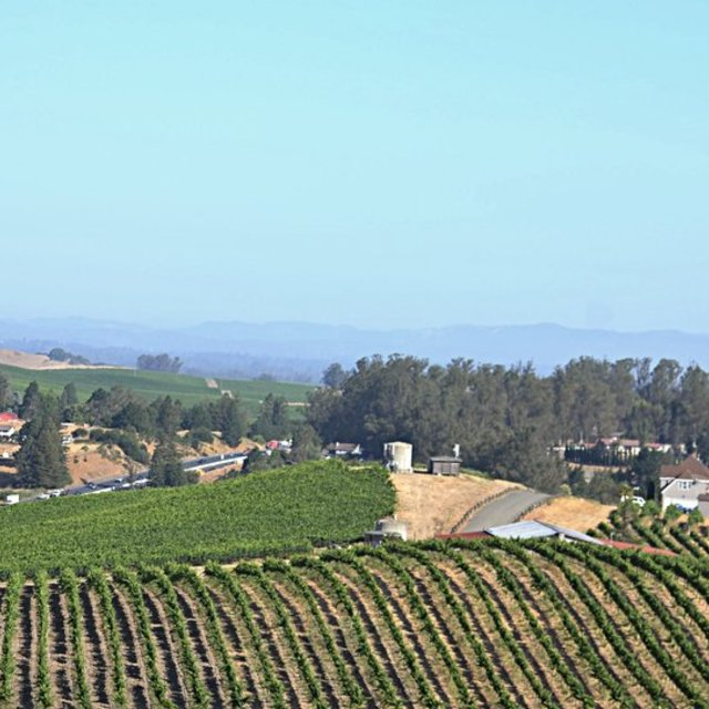 Karah Estate Vineyards, Cotati, CA - Localwise business profile picture