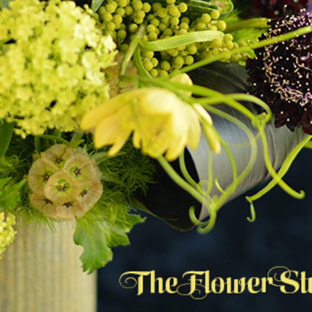 The Flower Studio, Rolling Meadows, IL logo