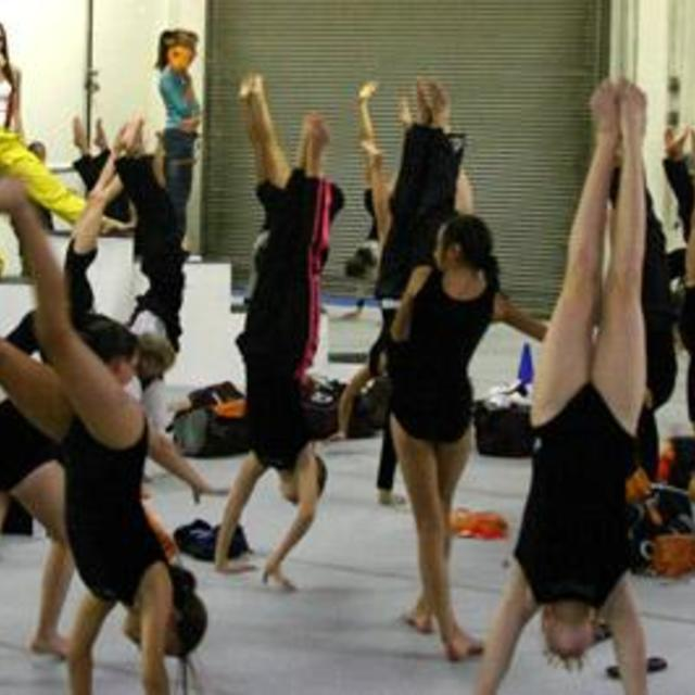 Windsor Gymnastics Center, Windsor, CA - Localwise business profile picture