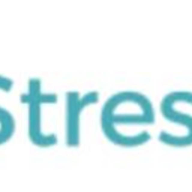 No Stress Maid, Chicago, IL logo