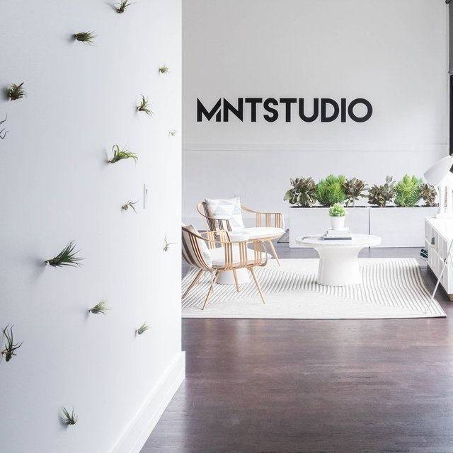 MNTStudio, San Francisco, CA - Localwise business profile picture