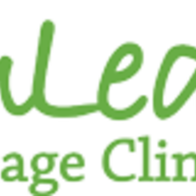 PalmLeaf Massage Clinic, Buffalo Grove, IL logo