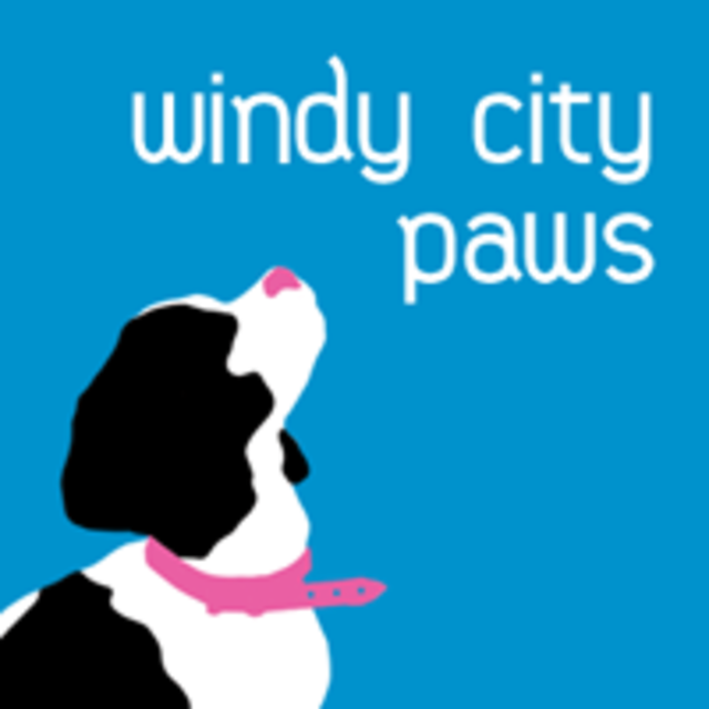 Windy City Paws, Chicago, IL logo