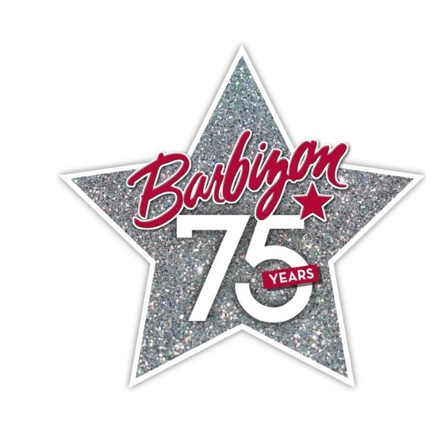 Barbizon USA, Tampa, FL logo