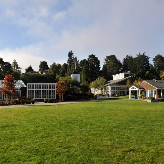 Mount Tamalpais School, Mill Valley, CA logo