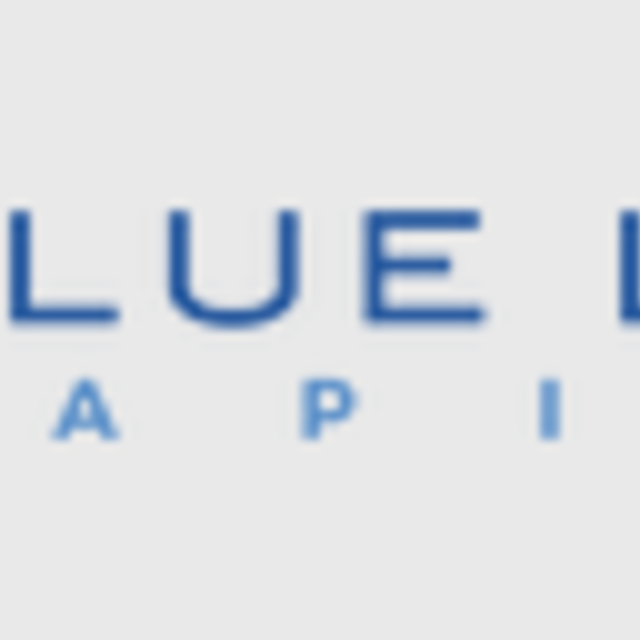 Blue Lake Capital, Santa Monica, CA logo