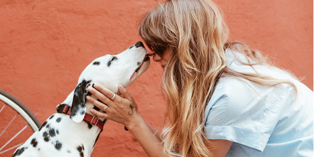 21 Jobs That Are Perfect For Animal Lovers Localwise